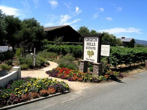 A stop at the Grgich Winery is possible on another tour