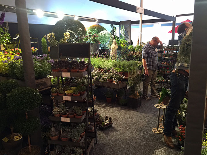A look at the garden section of the show